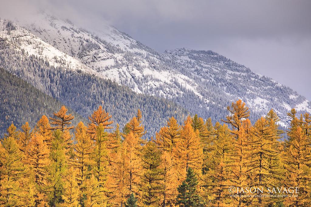Montana Photography Workshop