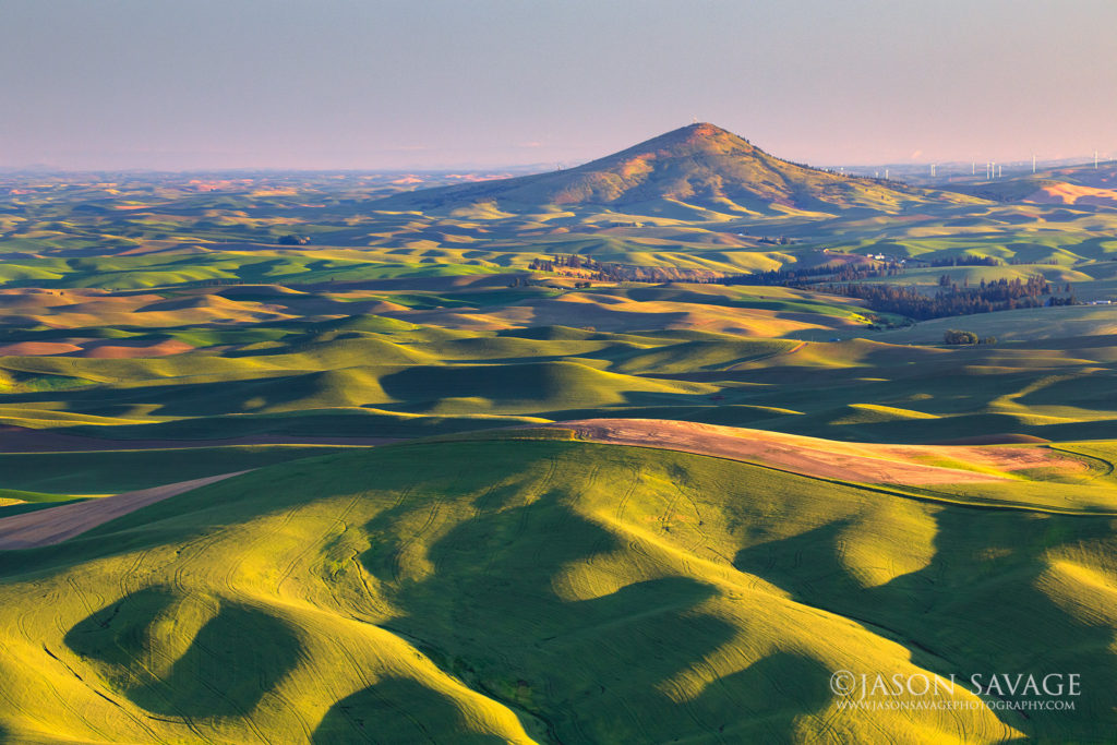 Palouse Steptoe Butte