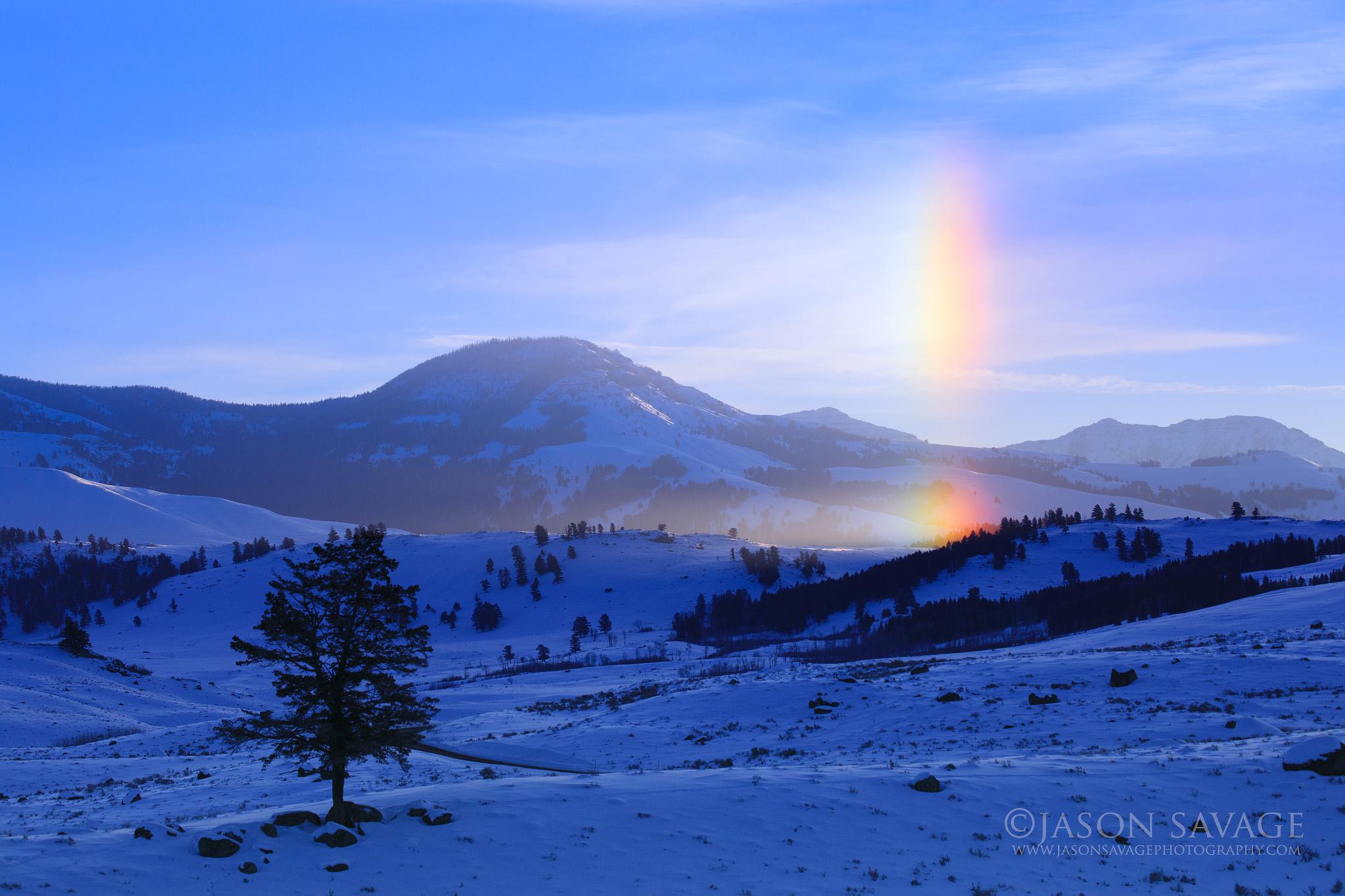 Yellowstone National Park Jason Savage Photography