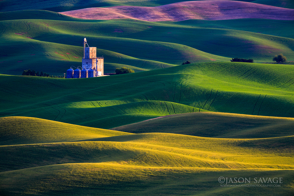 Washington Palouse