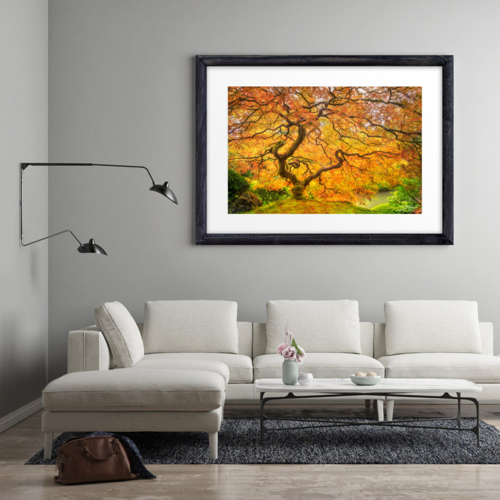 Fine Art Luxury Prints