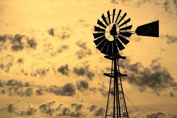 Washington Windmill