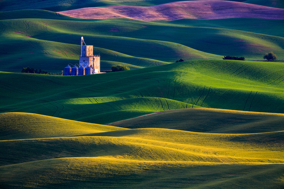 Palouse Washington Landscape