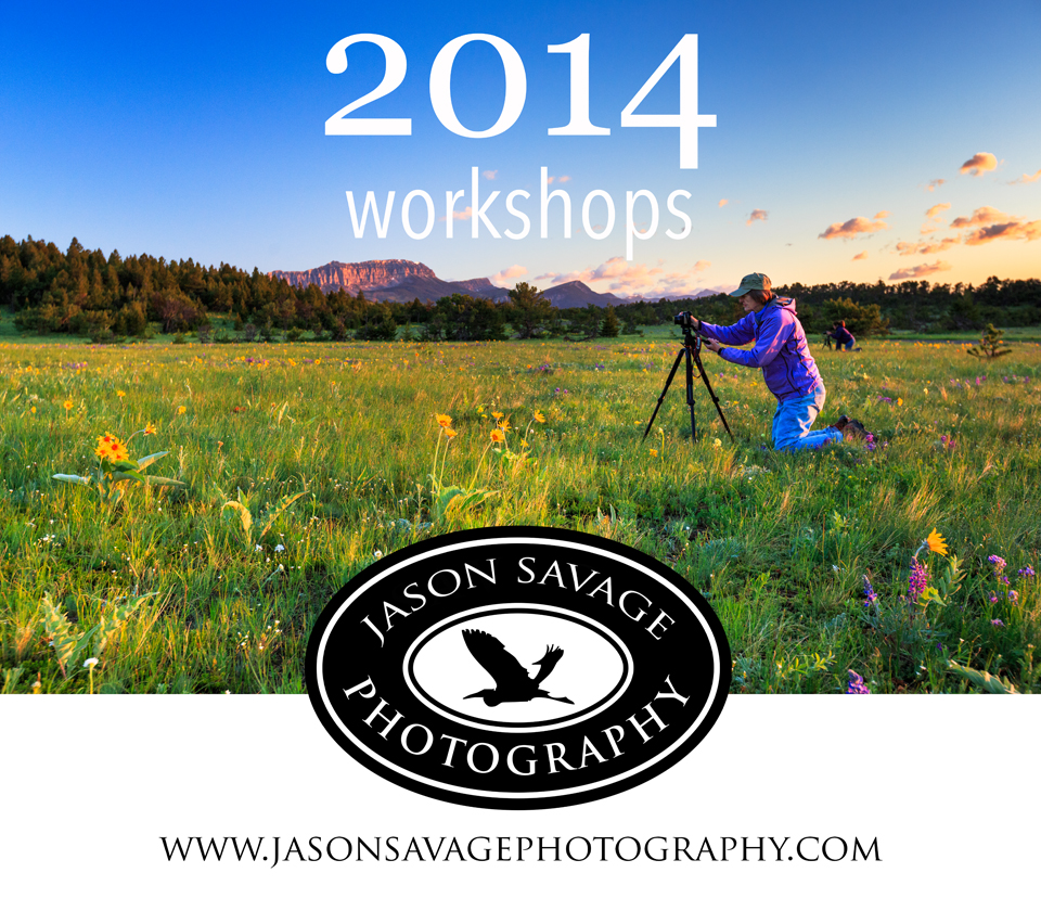 Montana Washington Photo Workshops