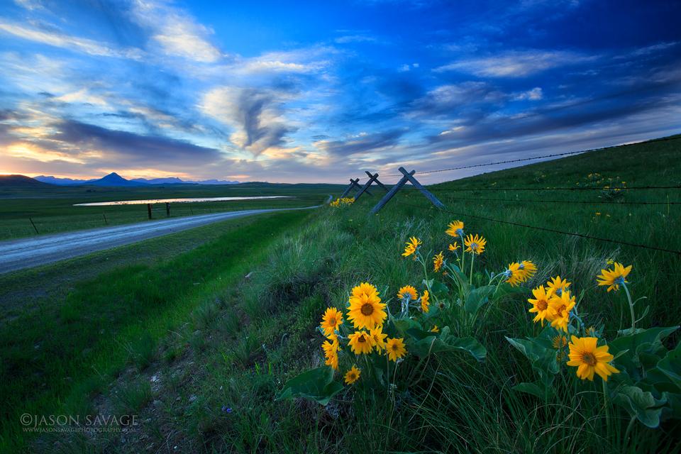 Montana Rocky Mountain Front