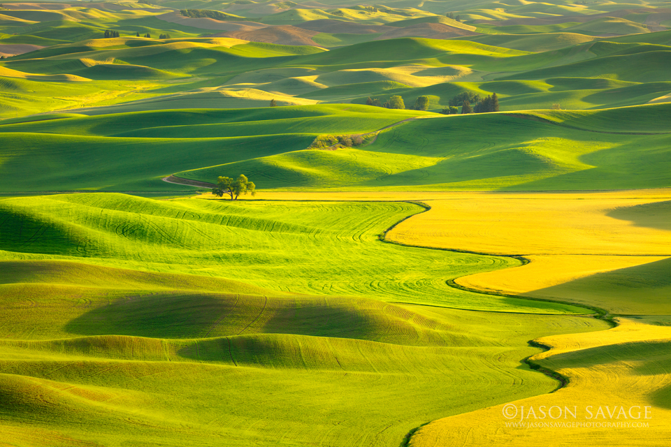 Palouse Workshop