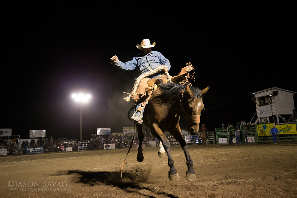 Montana Rodeo Photography