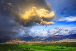 Montana Landcape
