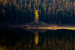 salmon-lake-tamarack-montana-2