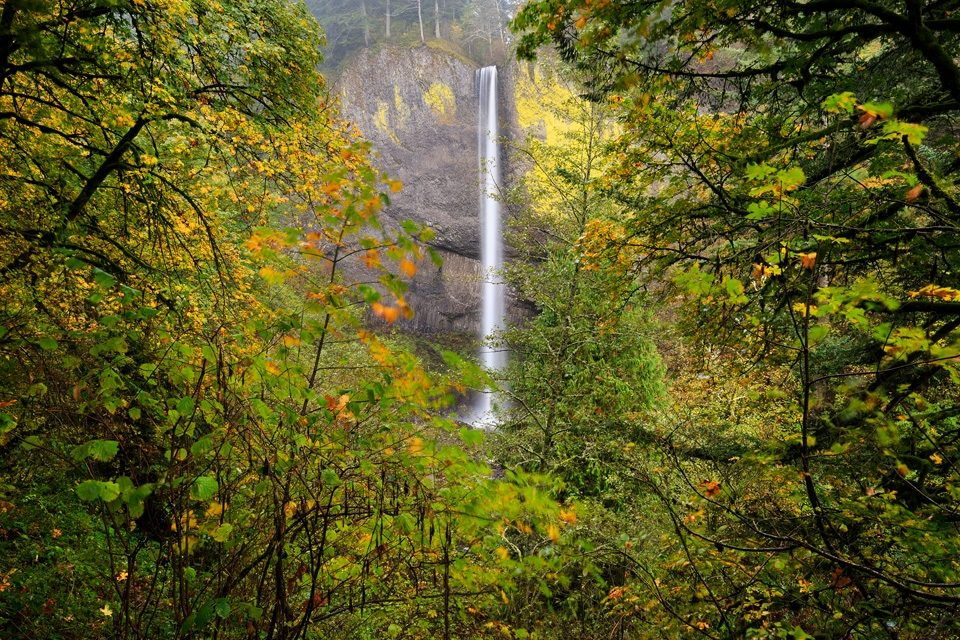 Columbia River Falls