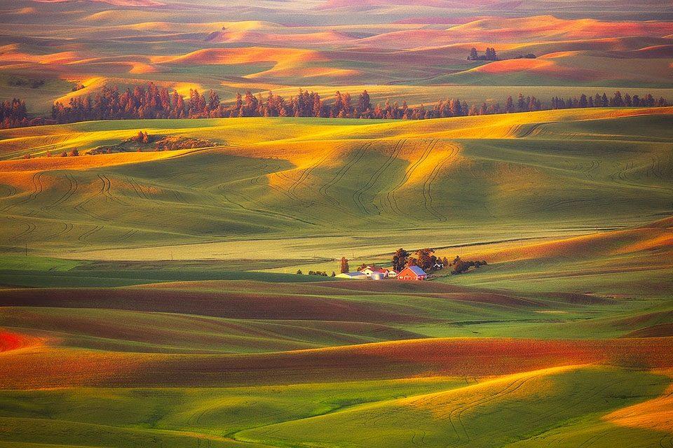 Washington Farmland